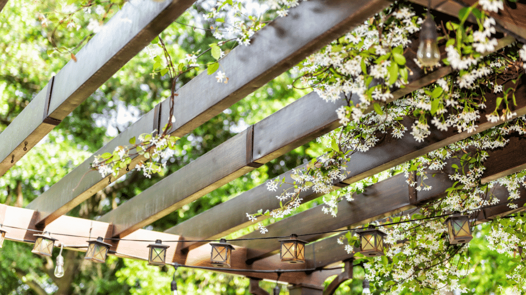 pergola with vines and flowers
